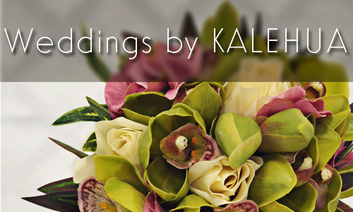 Kalehua Hawaii Weddings Healing Music